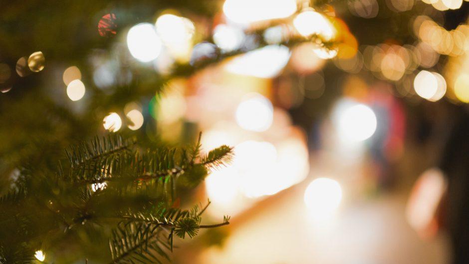 表参道ヒルズ初!2017年の表参道ヒルズの冬は、アートなクリスマスツリーが登場!