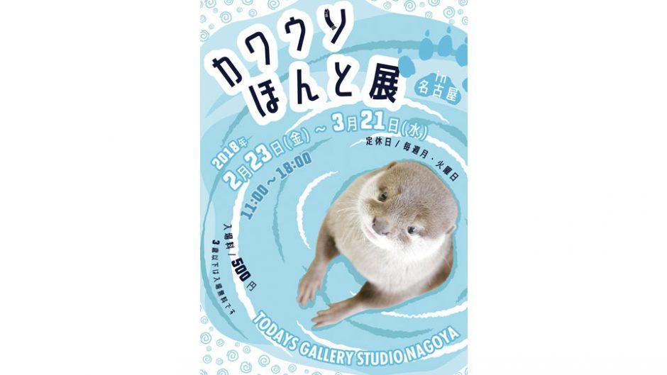 噂の『カワウソほんと展in名古屋』が開催!カワウソの物販や生態の紹介パネルなどが展示