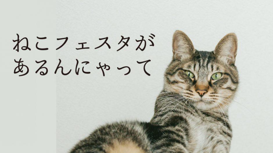 常滑とセントレアがネコづくし!「ねこフェスタ2018」 大人気のにゃんこスターも来場!