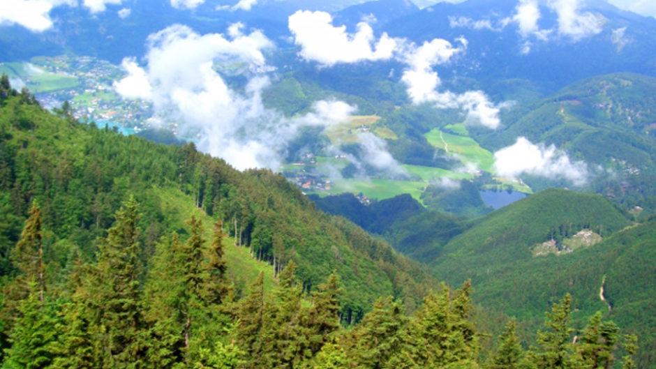 登山者必見!名古屋で唯一の山イベント『第7回 夏山フェスタ』がウインクあいちで開催!