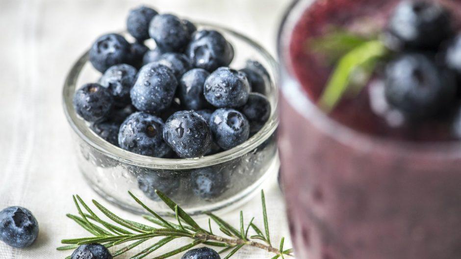 季節限定!生のブルーベリーを味わおう。モクモク手づくりファームで摘み体験