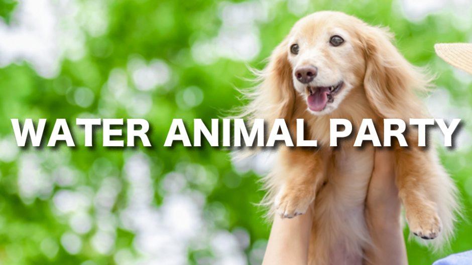 愛犬と一緒にずぶ濡れに!WATER ANIMAL PARTY