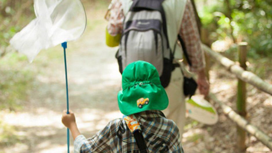 イオンモール長久手で『世界の昆虫展』が開催!大人気の甲虫が大集合!