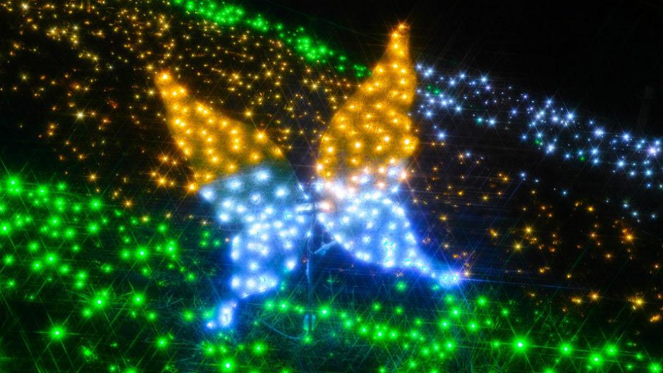 真冬の七夕!?稲沢・国府宮神社で祈願&奉納のLEDイルミネーション