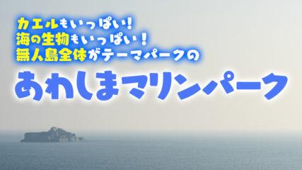 あわしまマリンパーク カエル館やイルカと遊べる静岡の無人島水族館!!