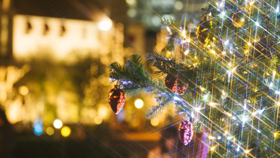 TEAM SHACHI クリスマスパーティーを開催! 会場はホテルナゴヤキャッスルだ!