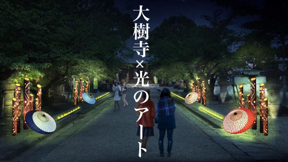 和の光 Art Night × 大樹寺 徳川家の菩提寺が幻想的な空間に!