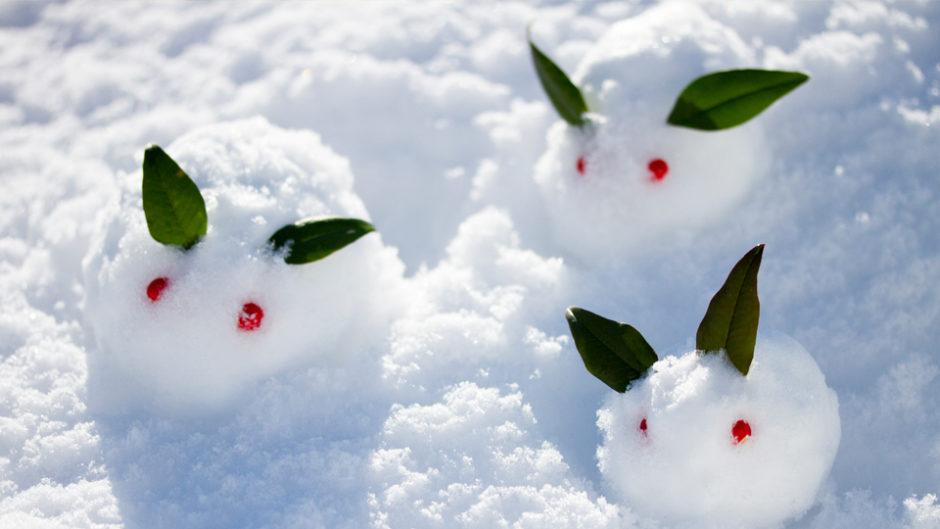 元気な子どもたちは牧歌の里ウィンターシーズンで寒さを吹き飛ばせ!