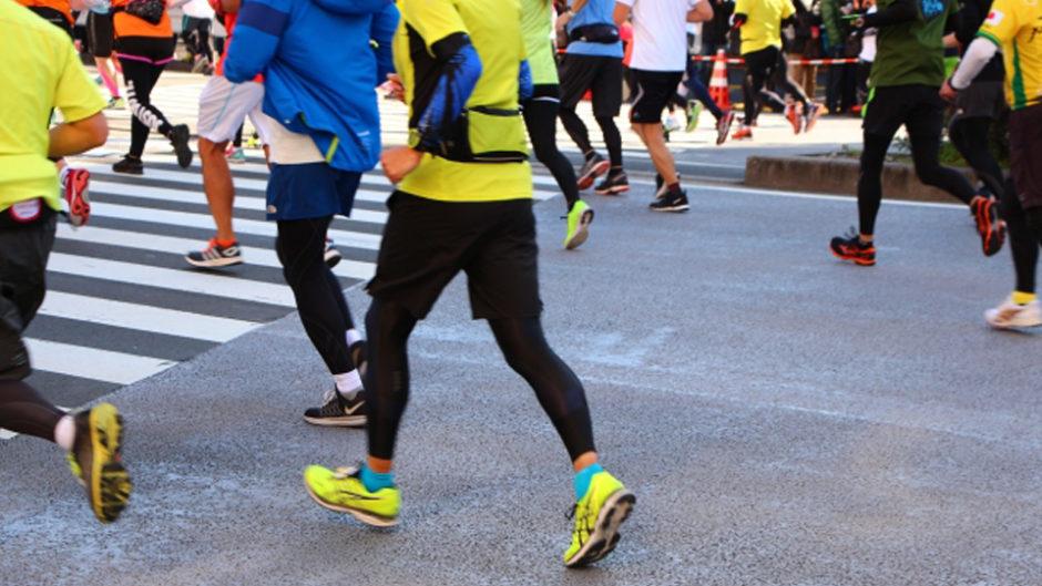 桜の季節は日本平でマラソン&ハイキング!参加期限は1月31日まで