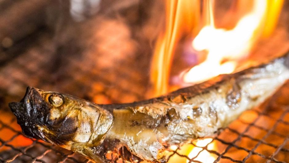 伊豆の特産品をその場で焼いてたいらげろ!「第25回 伊東温泉めくやくちゃ市」開催!
