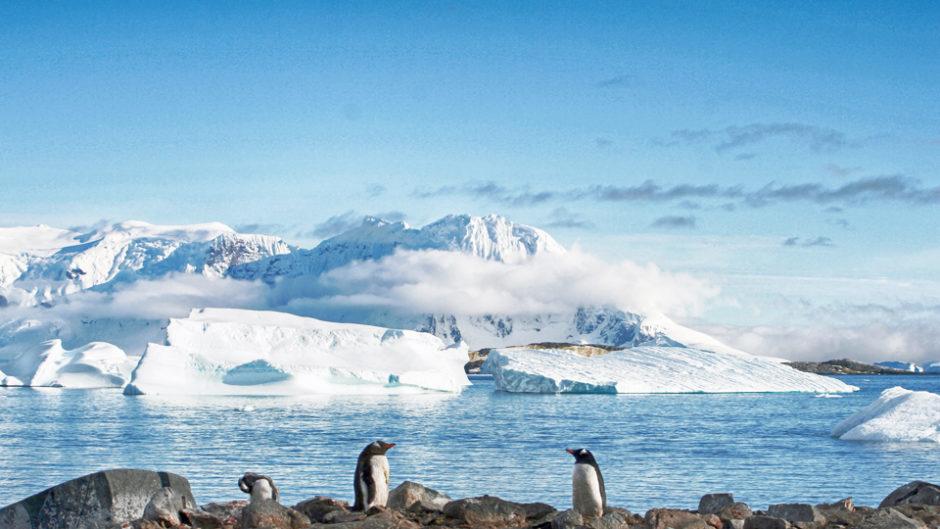 網走から鳥羽への贈り物「うみはく とばすい 流氷Days」開催