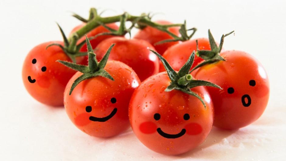 浜名湖パルパルでトマト狩り!?「トマトーナのもりもりトマトーレ」オープニングイベントでトマト祭りだ!!