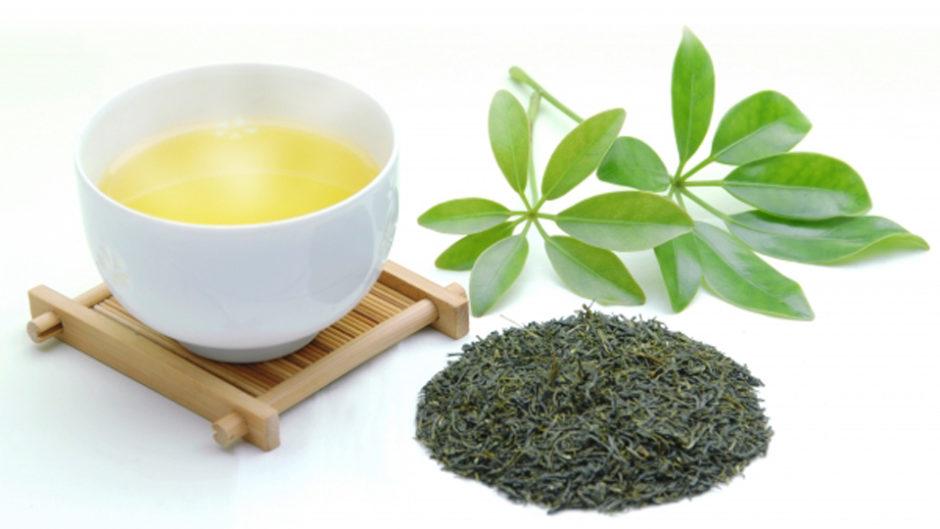 「世界お茶まつり2019 春の祭典」開催!新茶の季節、静岡でお茶の魅力を体感しよう♪