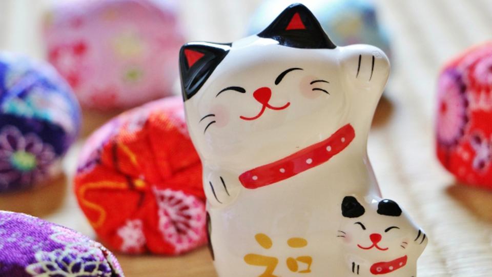 CHITA CAT OMOTENASHI TOUR