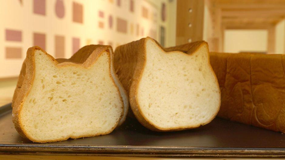 オアシスパークに高級食パン専門店「ねこねこ食パン」が7/10に新オープン!!