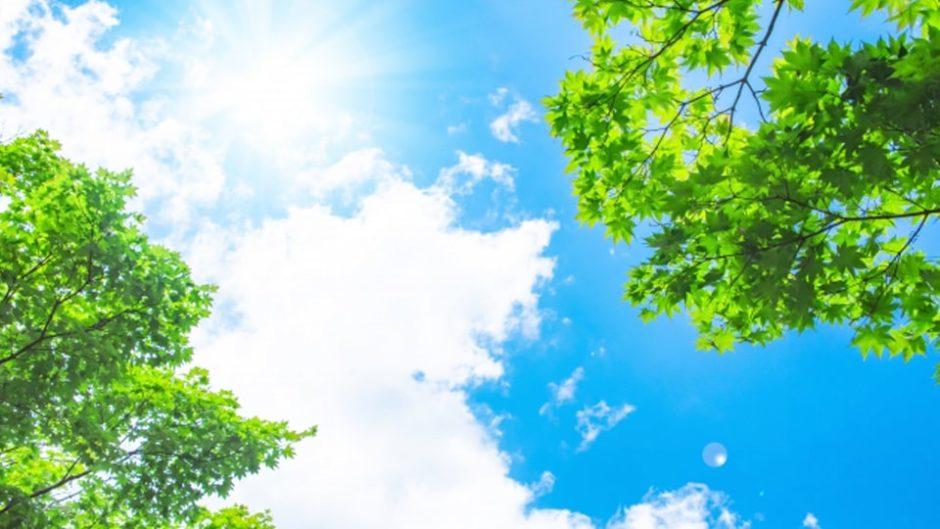 モリコロパークに夏休み限定の遊びがいっぱい!「真夏のモリコロ大作戦」開催!