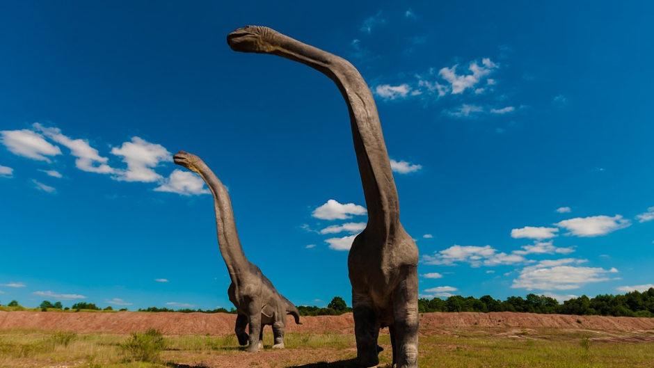 東海大学自然史博物館で小学生以下が対象の「恐竜ナイトツアー」開催!夜の博物館を探検しよう♪