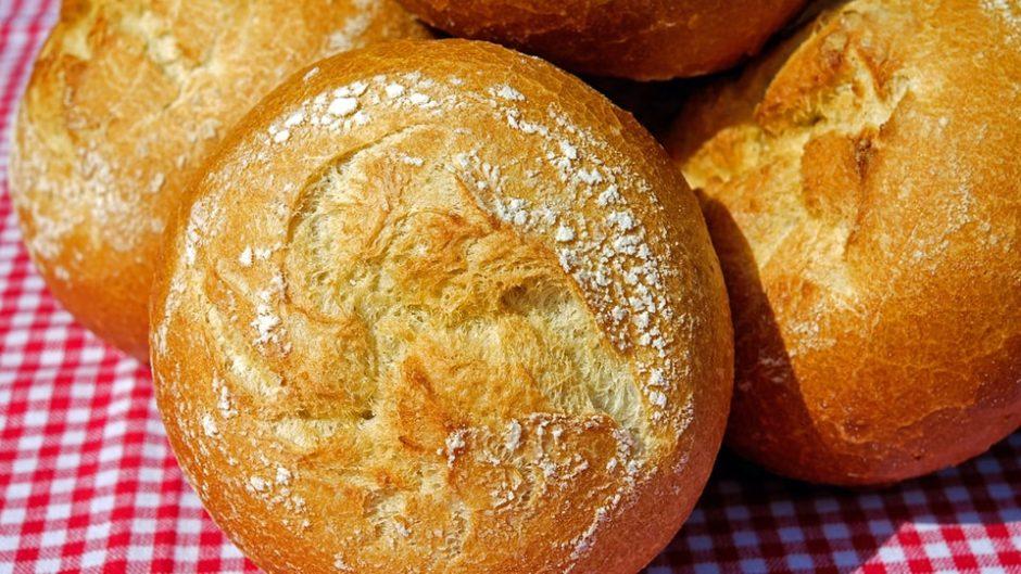 パンをくわえて走る!パン食いdeリレーマラソンin碧南市臨海公園