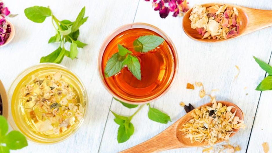 「ルピシア グラン・マルシェ2019」日本や世界中のあらゆるお茶が吹上ホールに大集結!