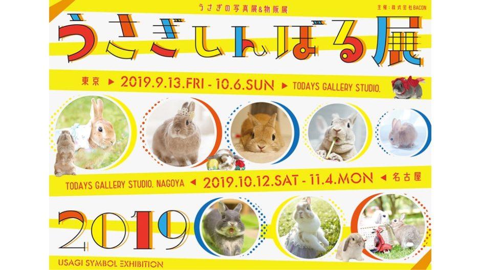 「うさぎしんぼる展 2019」名古屋で開催!秋らしさを感じられるうさぎたちがいっぱい!