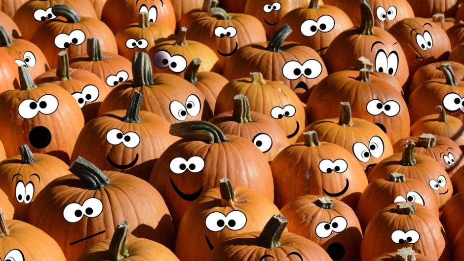 デンパーク秋収穫祭