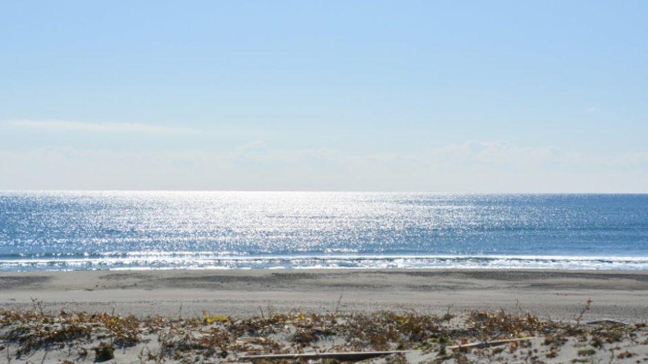 「コスモ アースコンシャス アクト クリーン・キャンペーン in 美浜」みんなで楽しく海岸で清掃活動をしよう!