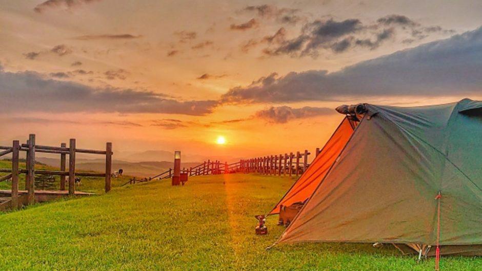 愛知県田原市で開催「海鳴りジャンボリー」キャンプやライブで遊びつくせ!