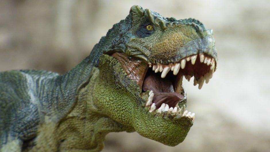 柳ヶ瀬商店街に巨大恐竜現る!迫力満天の「柳ケ瀬ジュラシックアーケード2019」