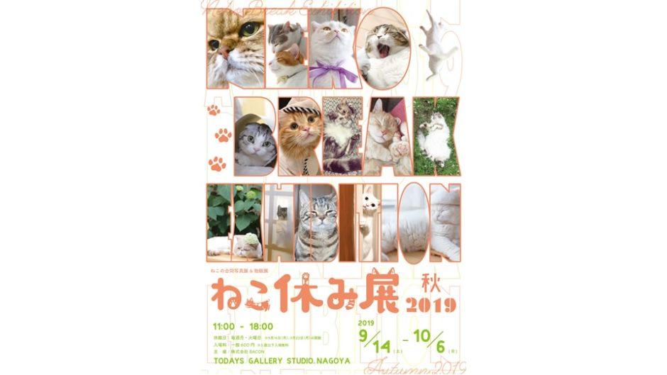 「ねこ休み展 秋 2019」名古屋ギャラリー2周年!猫の写真展&物販展