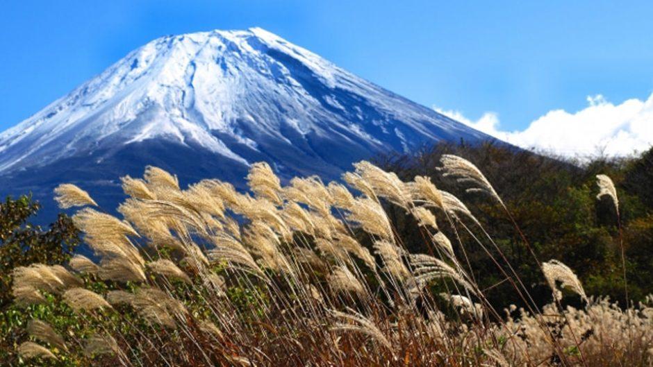 富士山の秋を堪能♡『頂上を目指さない富士山ツアー2019 秋の二ツ塚ハイキング』が開催