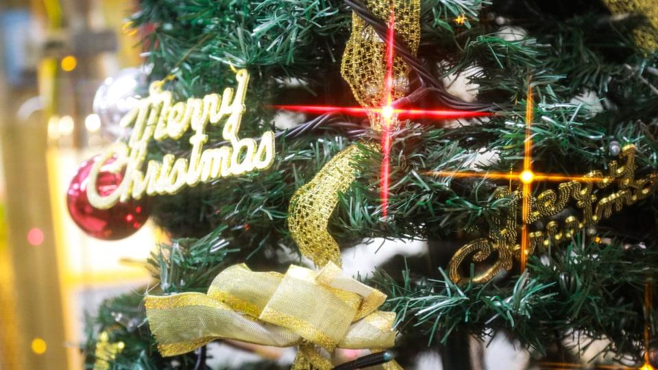 しまじろうトゥインクルクリスマスパーティー英語コンサート