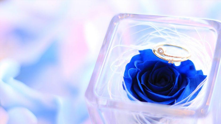 運命の指輪と出会える!『ブライダルリングフェア』が静岡県で開催