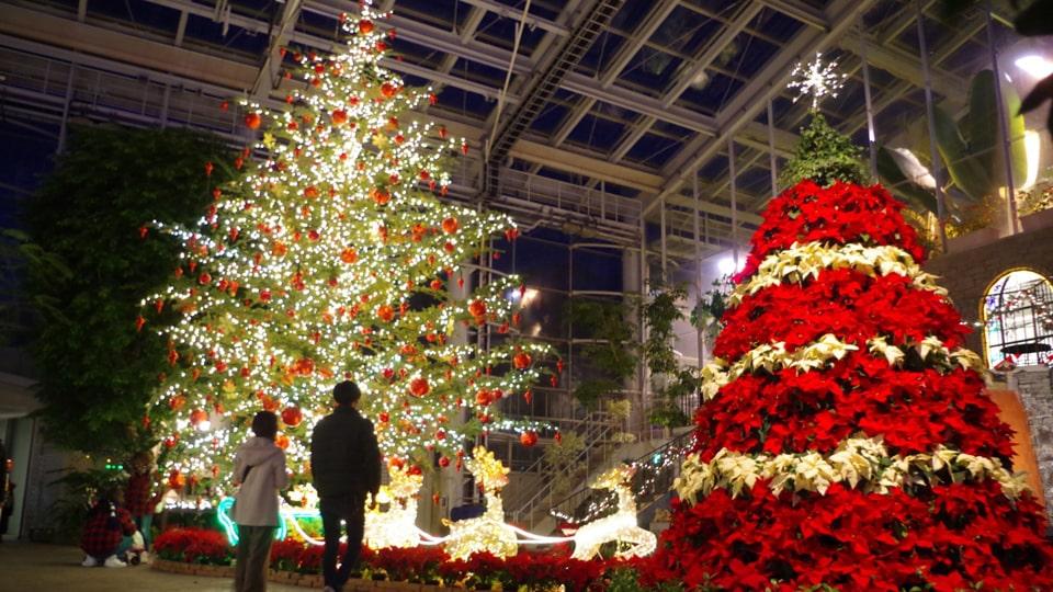 東海エリア クリスマス イルミネーション特集2019