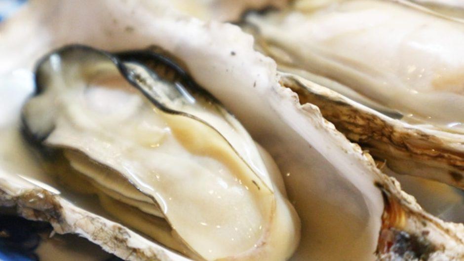 伊勢湾フェリーで行く蒸し牡蠣食べ放題プラン