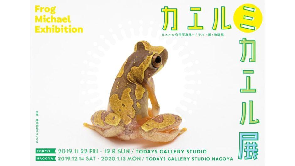 リアルなカエルの魅力を体感!『カエルミカエル展in名古屋』が愛知県で開催