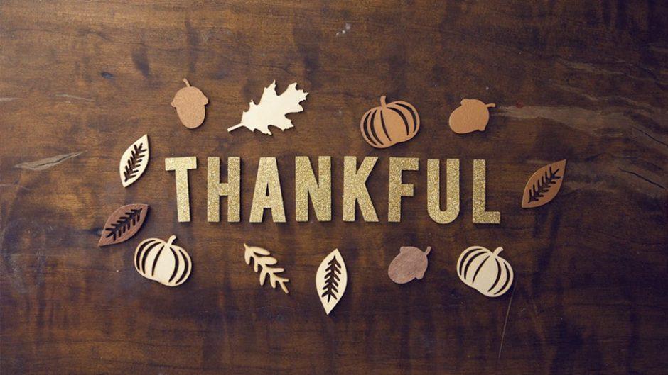 一年間の感謝をこめて!モクモクファーム恒例の「ありがとう感謝祭」