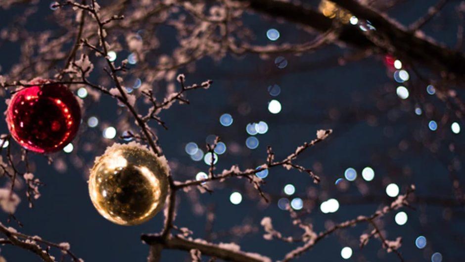 東海エリアのクリスマス&イルミ2019