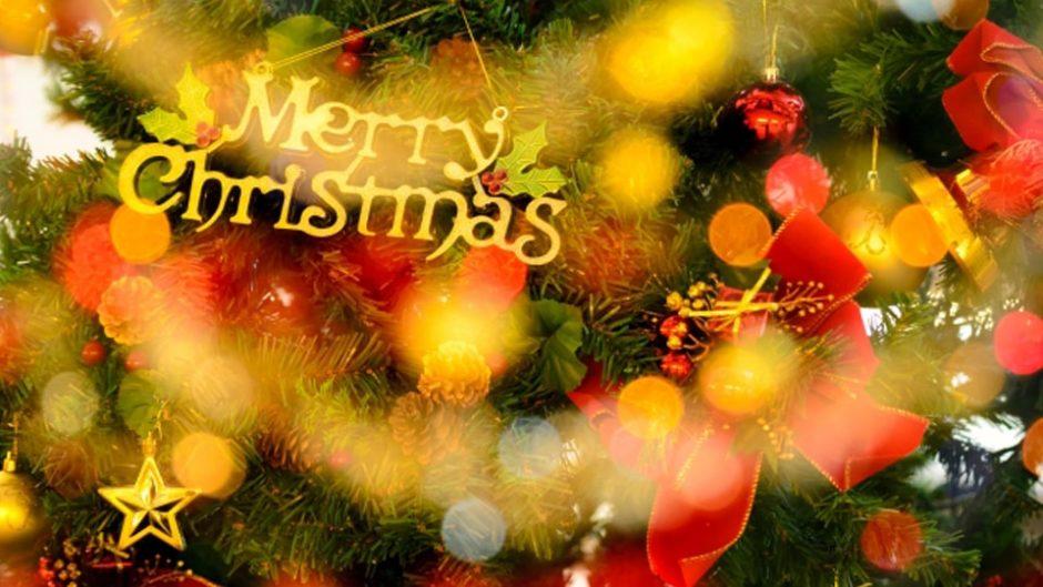 クリスマスをロックに過ごそう!佐野元春の『ロッキン・クリスマス』が今年も開催