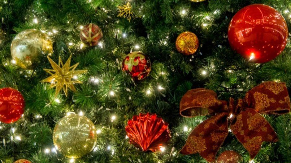 東海エリアのクリスマス&イルミ特集