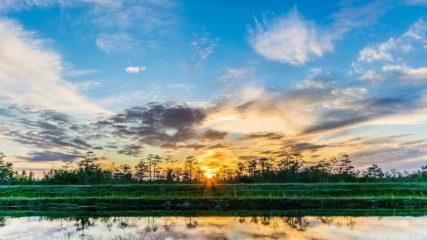 伊勢志摩エバーグレイズ 豊かな自然と他にはない驚きとワクワクが楽しめるキャンプ場をお届け!