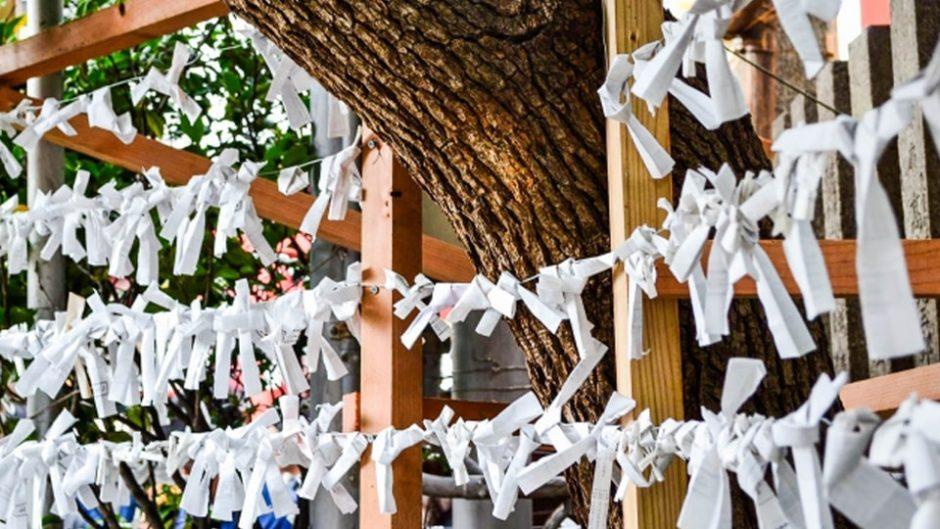 2020年 静岡おすすめ初詣まとめ!県内人気トップの静岡浅間神社や久能山東照宮など!!
