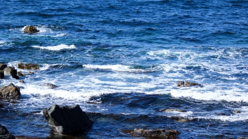 第19回厳冬海中みそぎ祭り