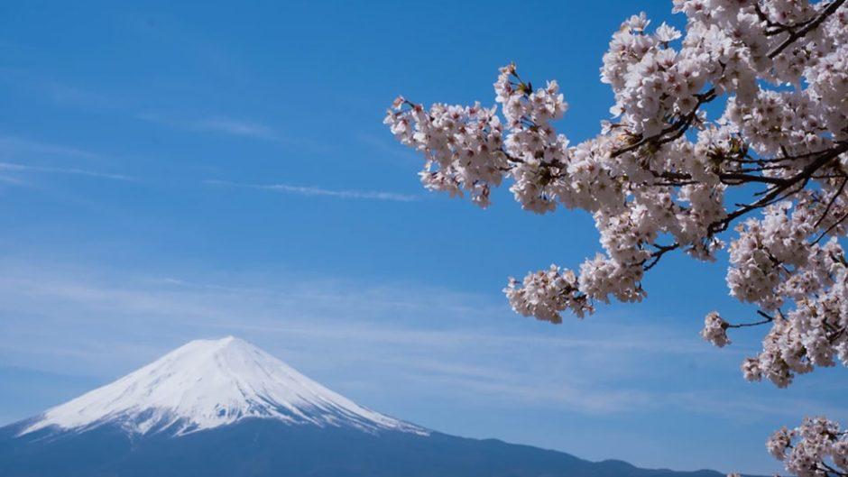 富士山のことをより知れる2日間 「なんでも富士山2020」2月22日・23日開催