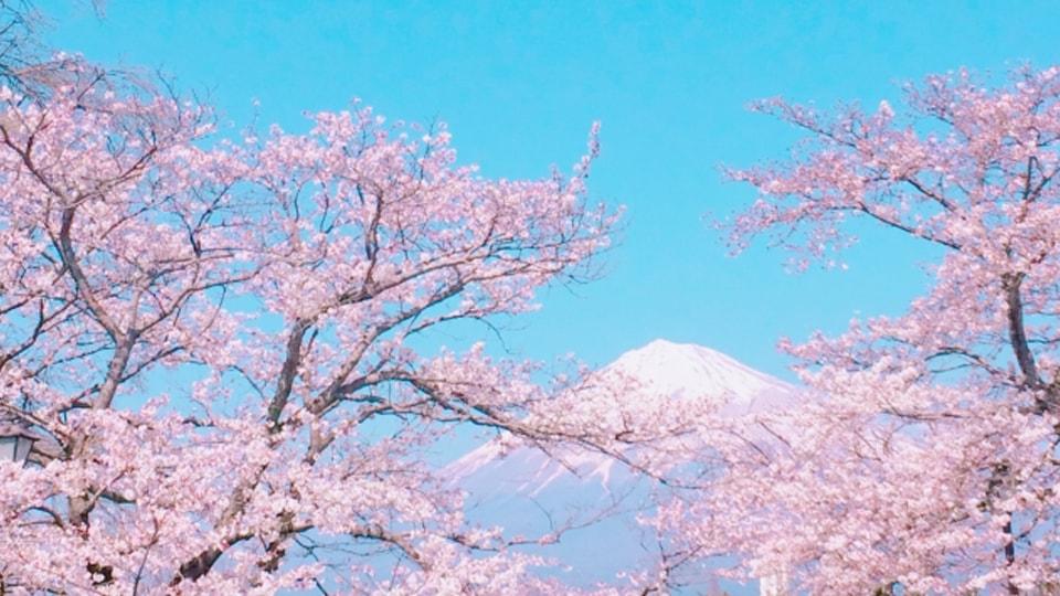 絶景☆富士山 まるごと岩本山