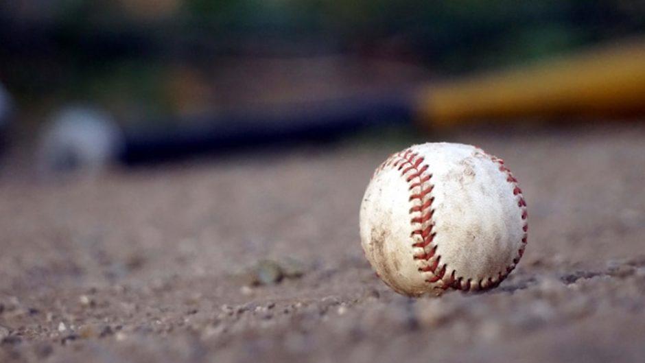 静岡の女子野球&女子スポーツを盛り上げよう♪『静岡女子野球フェスタ2020』開催!