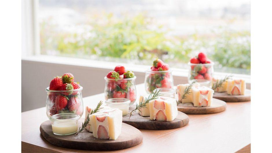 農園直送!恵比寿楽園テーブルで「完熟いちご食べ放題」開催