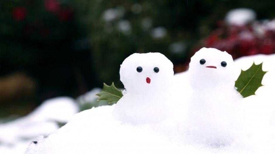 貴重な天然雪で遊び尽くそう!「第8回モリコロパーク雪まつり」
