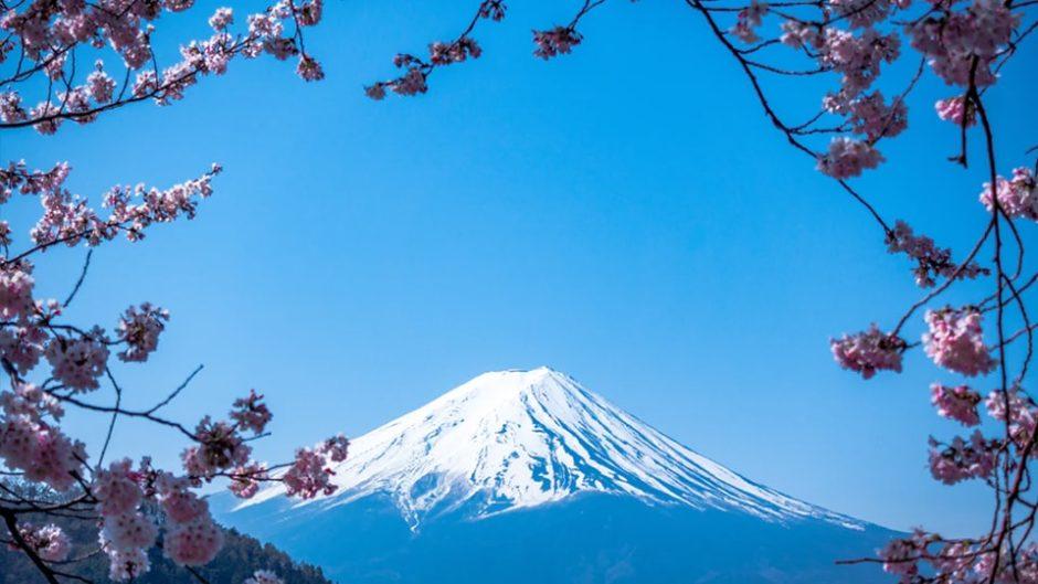 『第64回 静岡まつり』が静岡市で開催♪2020年の大御所は加藤諒さん&前川泰之さん♡