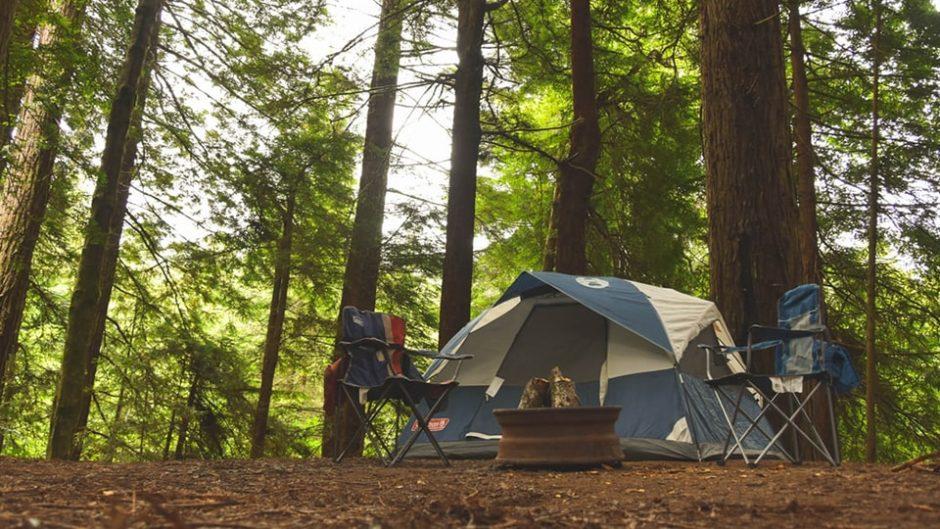 魅力いっぱい春キャンプ!自然の中で最高の春を感じよう!