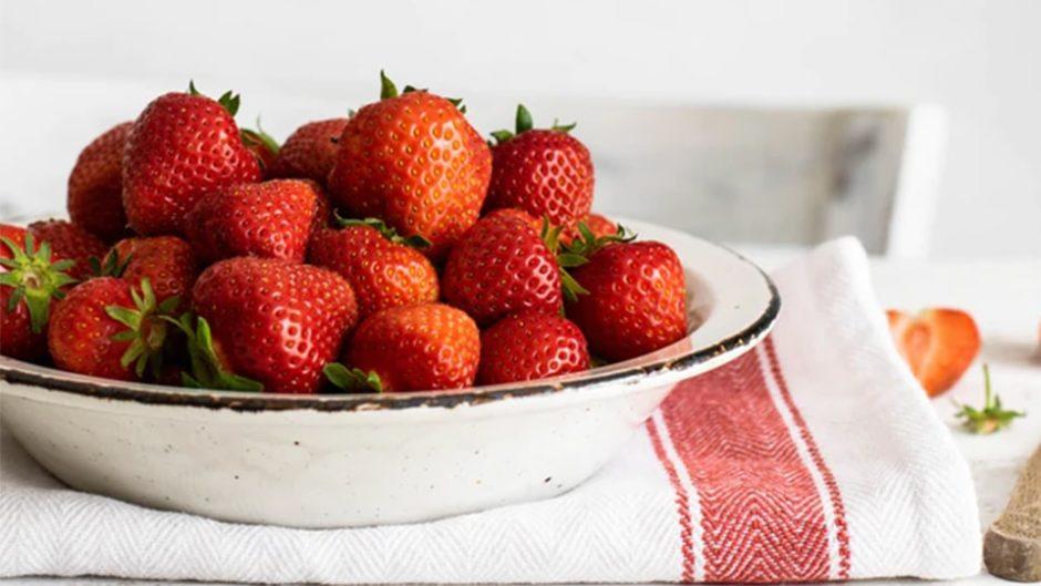 愛知・南知多のイチゴ狩り「いちごの里」でビタミン補給♪